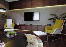Wooden-shelves-above-and-below-the-TV-in-the-gorgeous-contemporary-living-room-217x155
