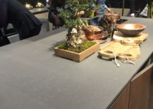 Bonsia-plant-on-the-kitchen-counter-is-an-absolute-showstopper-217x155