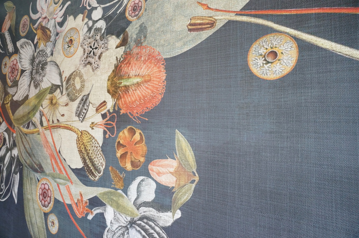 Botanical wallpaper from Robin Sprong's Room 13 Collection