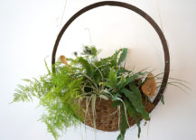 Hanging planter by Aimee Walden-Moyer