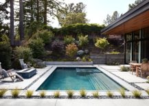 Modern small pool complements the Eichler-inspired Californian home perfectly
