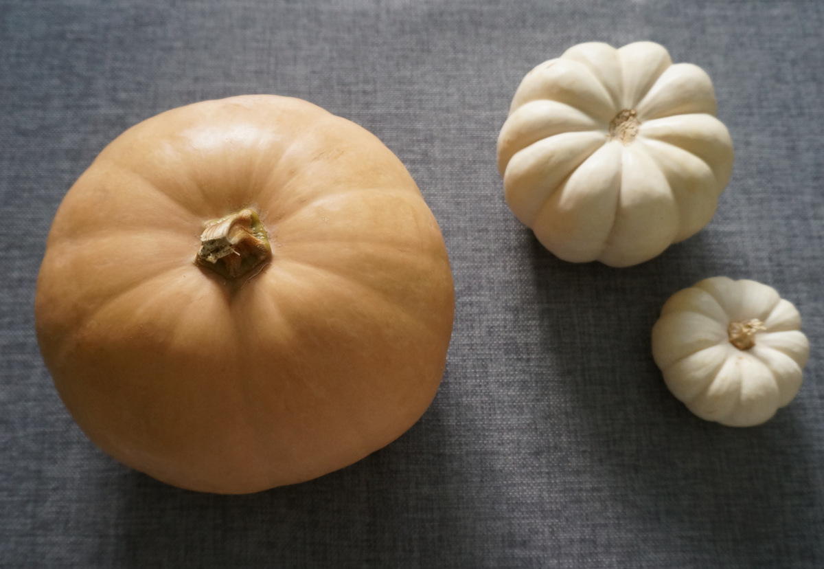 Peach and white pumpkins