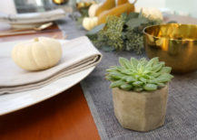 Succulent favor for Thanksgiving
