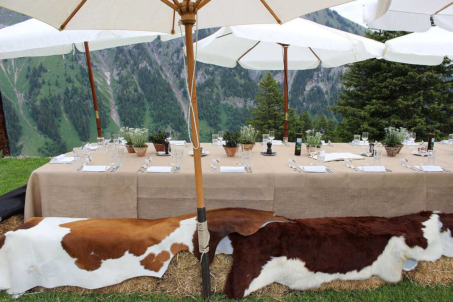 Amazing sight of the alps leaves you spellbound at this Swiss hotel