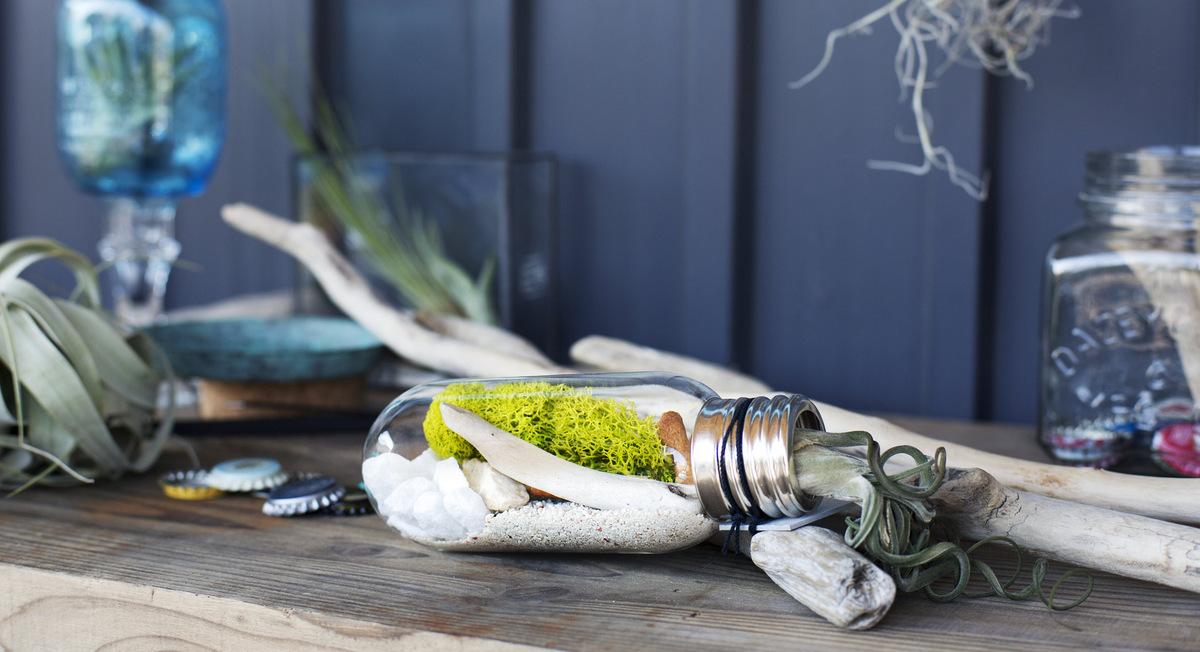 Bulb terrarium kit from Urban Green Makers