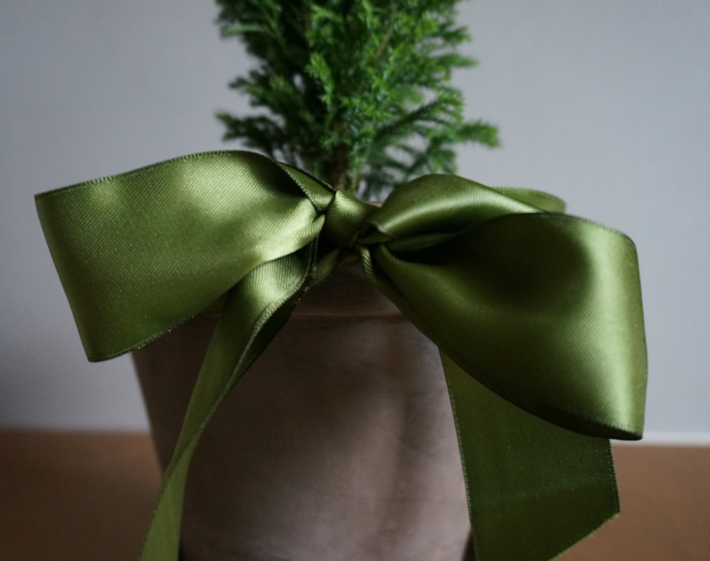 Green sateen ribbon