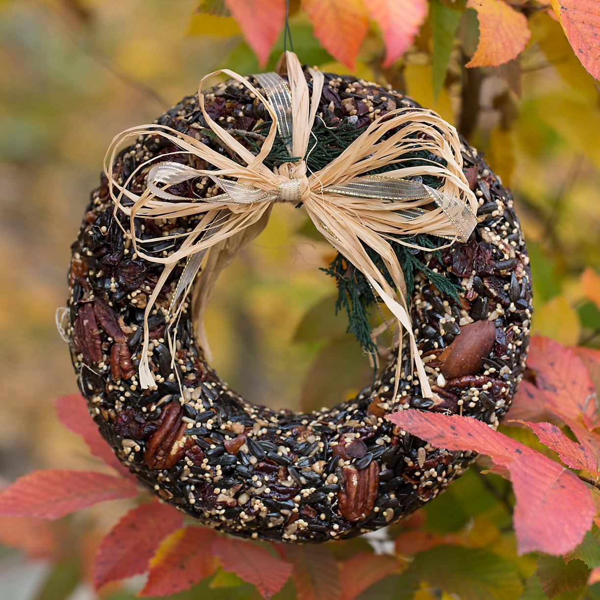 Pecan and seed wreath from Terrain