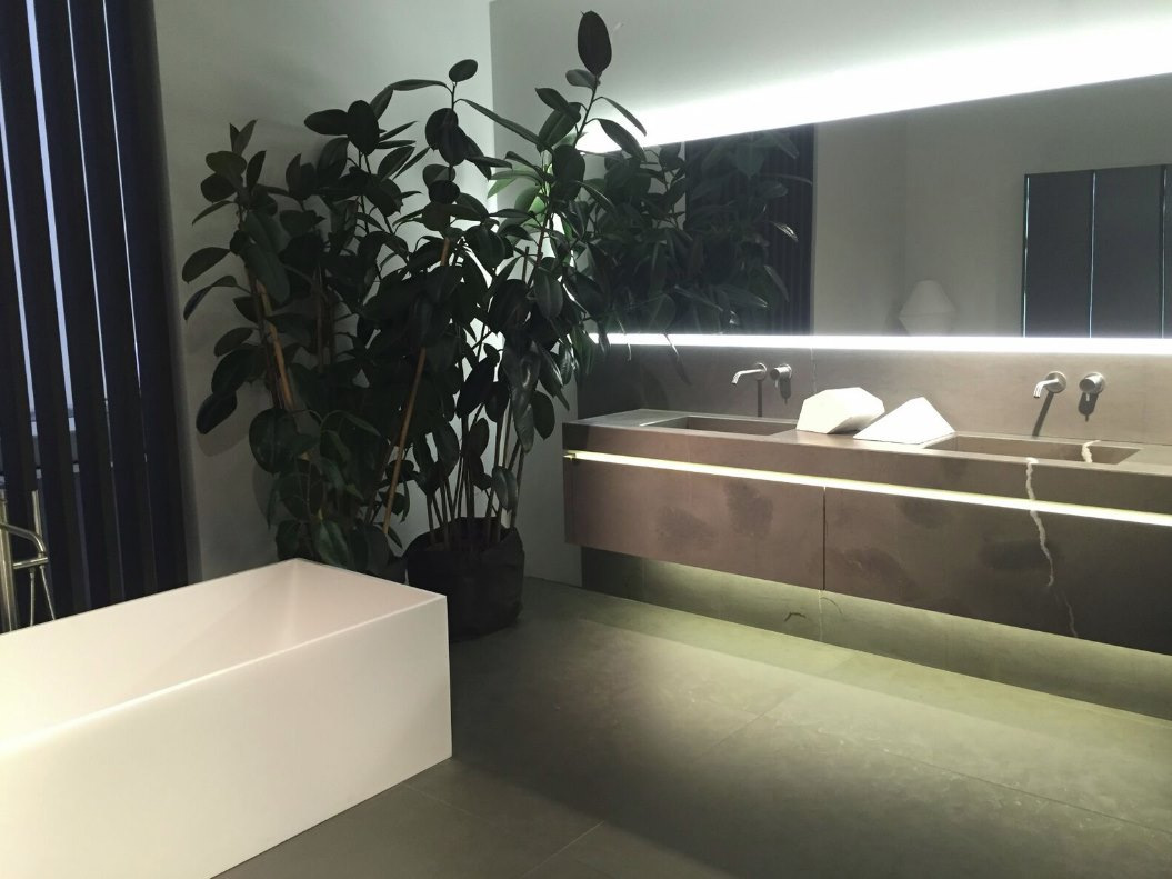 Potted plants in a neutral bathroom