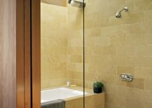 Skylight-brings-ample-natural-light-into-the-modern-bathroom-217x155
