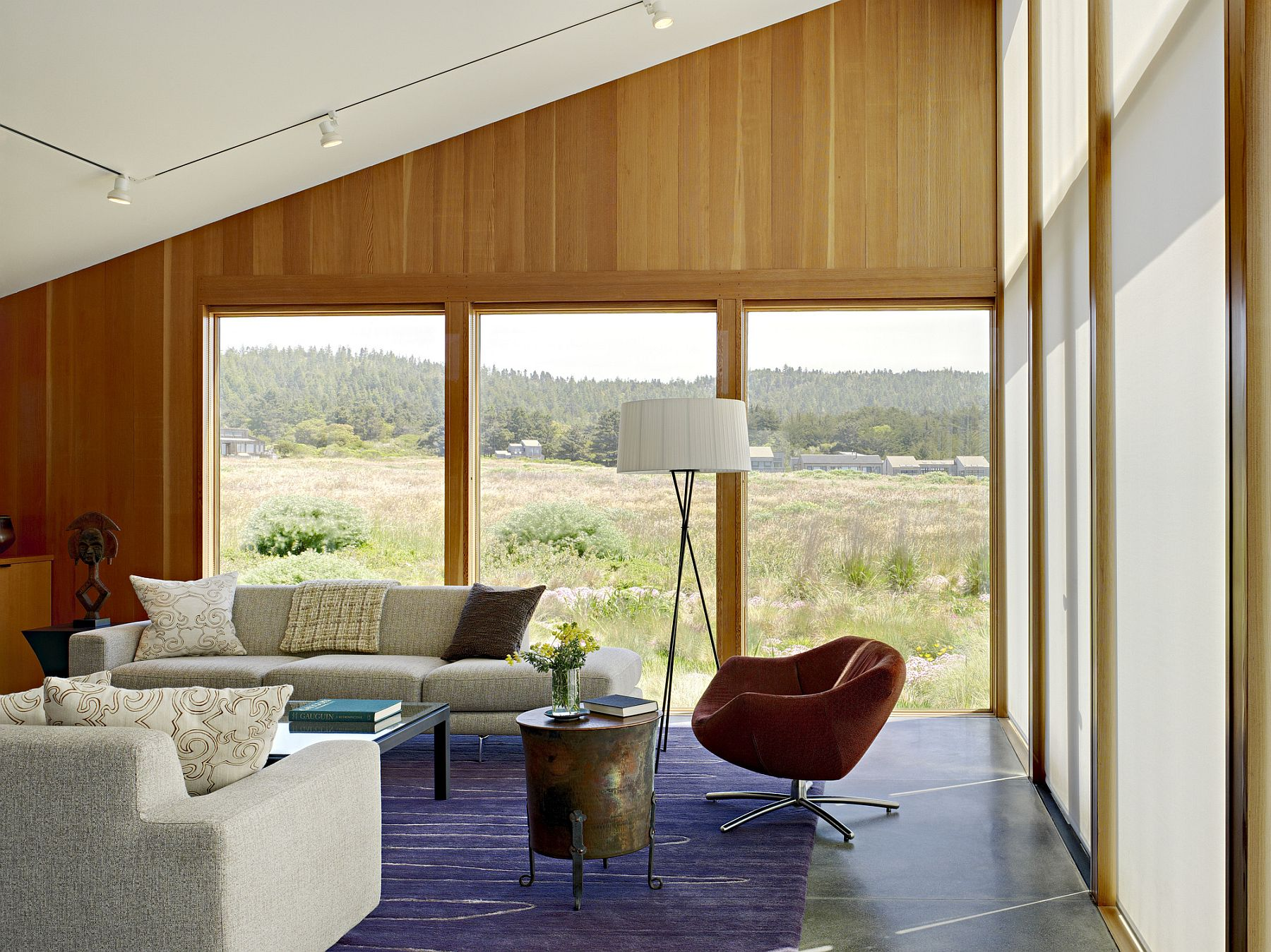 Track lighting and natural light illuminate the living area