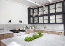 Unique-kitchen-island-with-marble-top-and-a-herb-garden-217x155