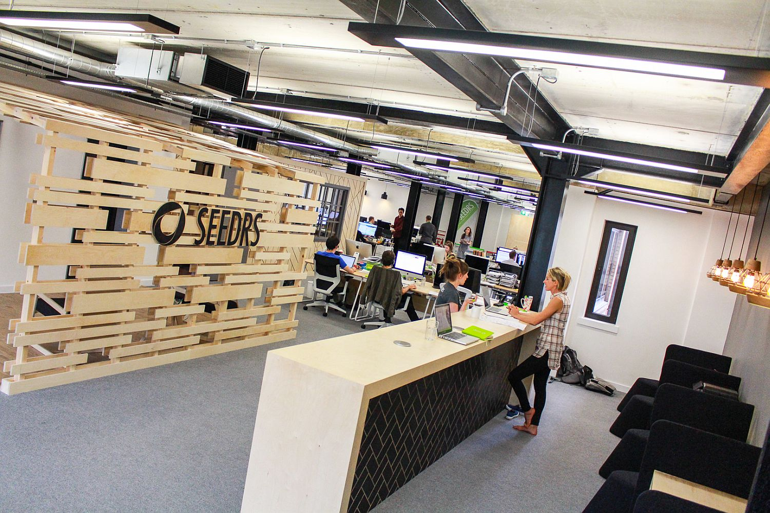 Birch Ply canopy greets you at the reception area of Seedrs