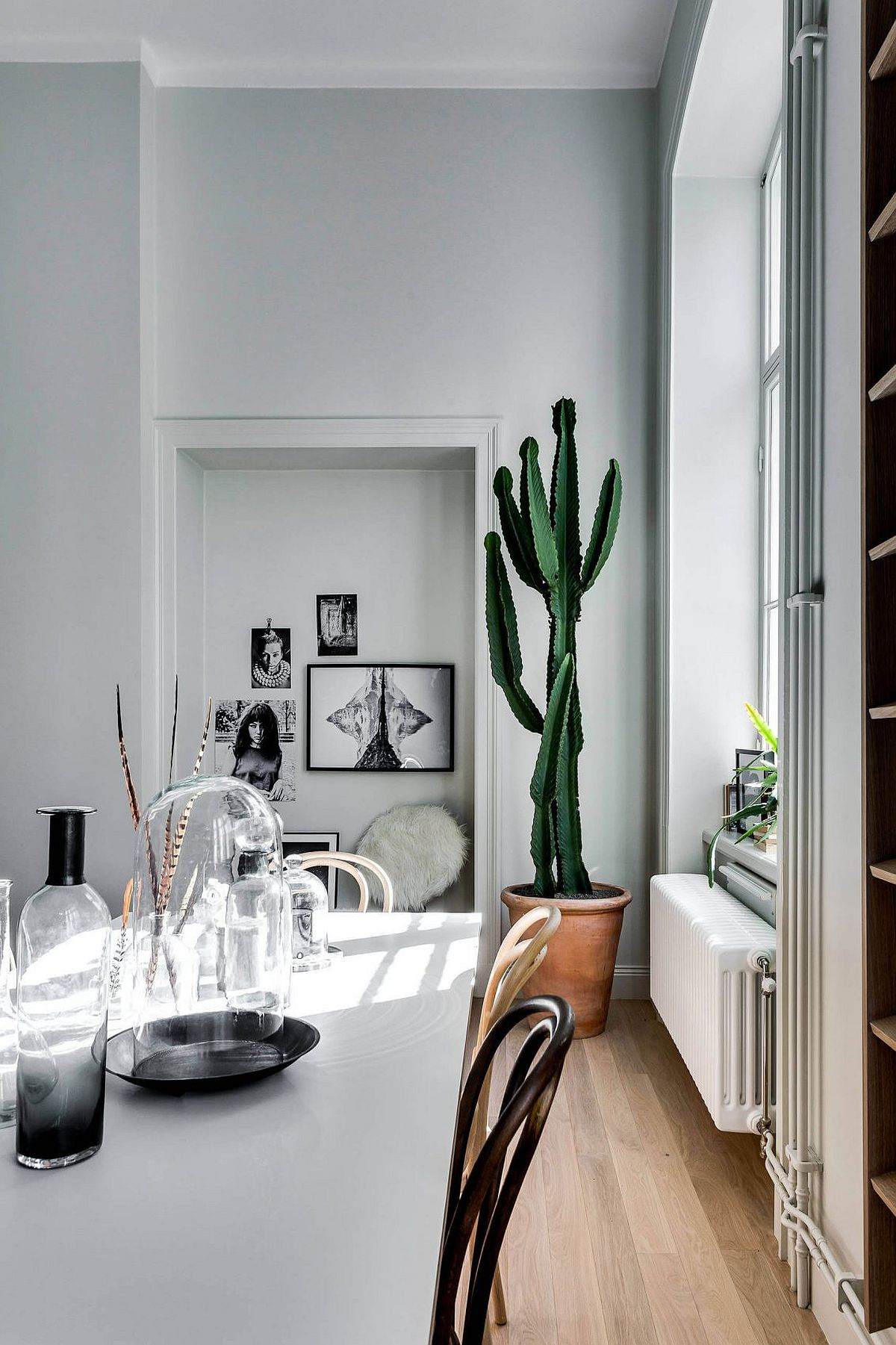 Indoor plant in the corner adds color to the Scandinavian dining space