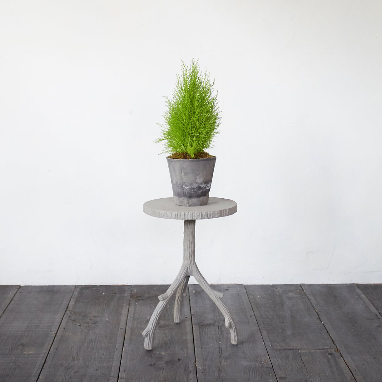 Plant stand from Terrain