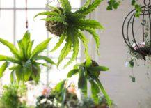 String-garden-from-Terrain-217x155