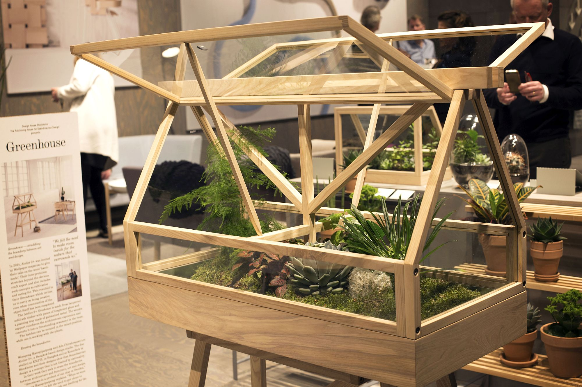 Stylish-Greenhouse-for-the-eco-conscious-home