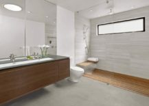 Contemporary-bathroom-in-gray-and-wood-217x155
