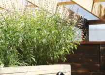 Deck-with-integrated-garden-planters-is-a-fun-space-saver-in-the-small-greenhouse-217x155