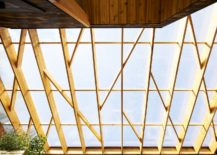 Diagonally-braced-lattice-structure-and-polycarbonate-screen-bring-in-soft-diffused-light-217x155