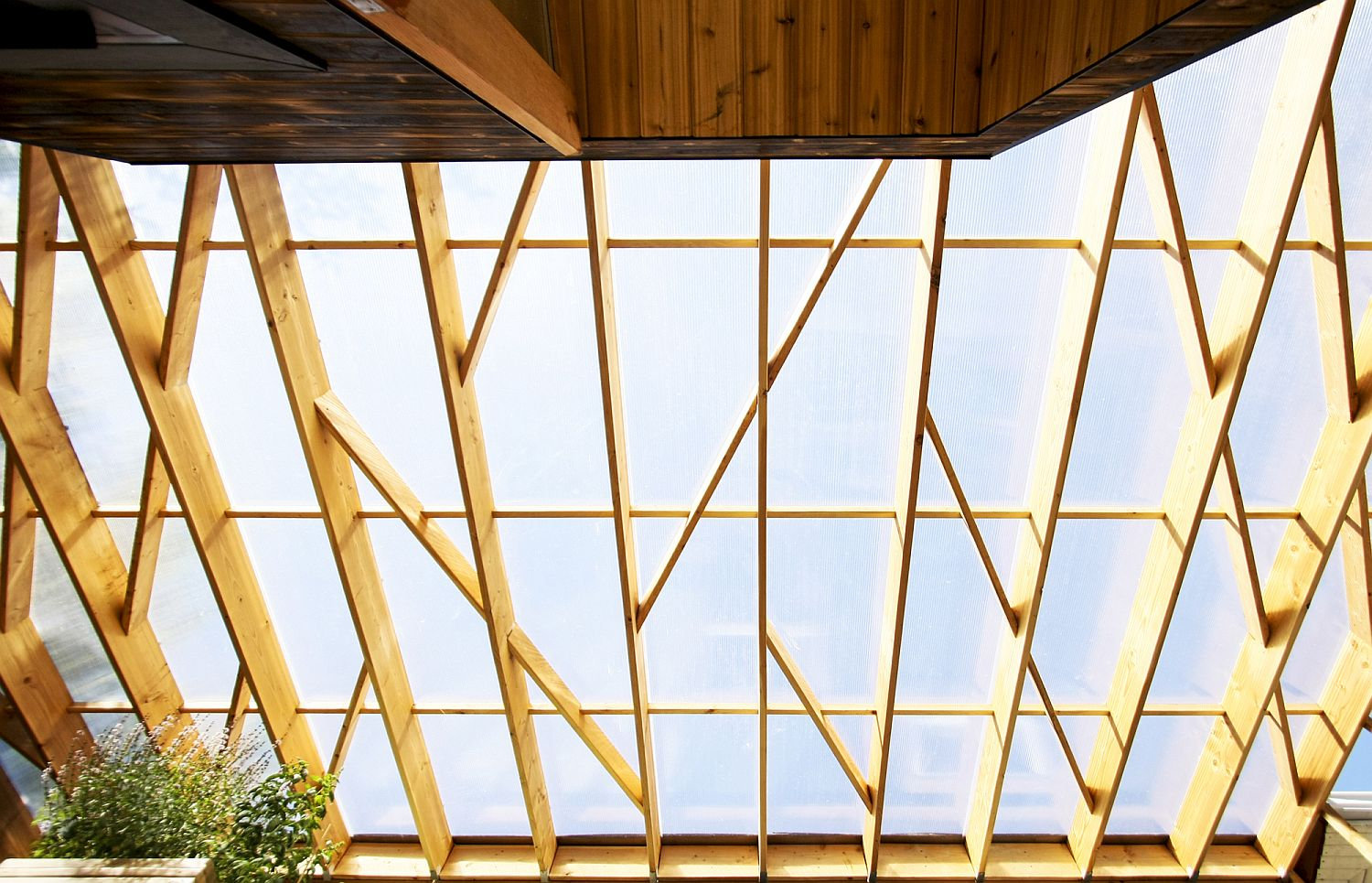 Diagonally braced lattice structure and polycarbonate screen bring in soft, diffused light