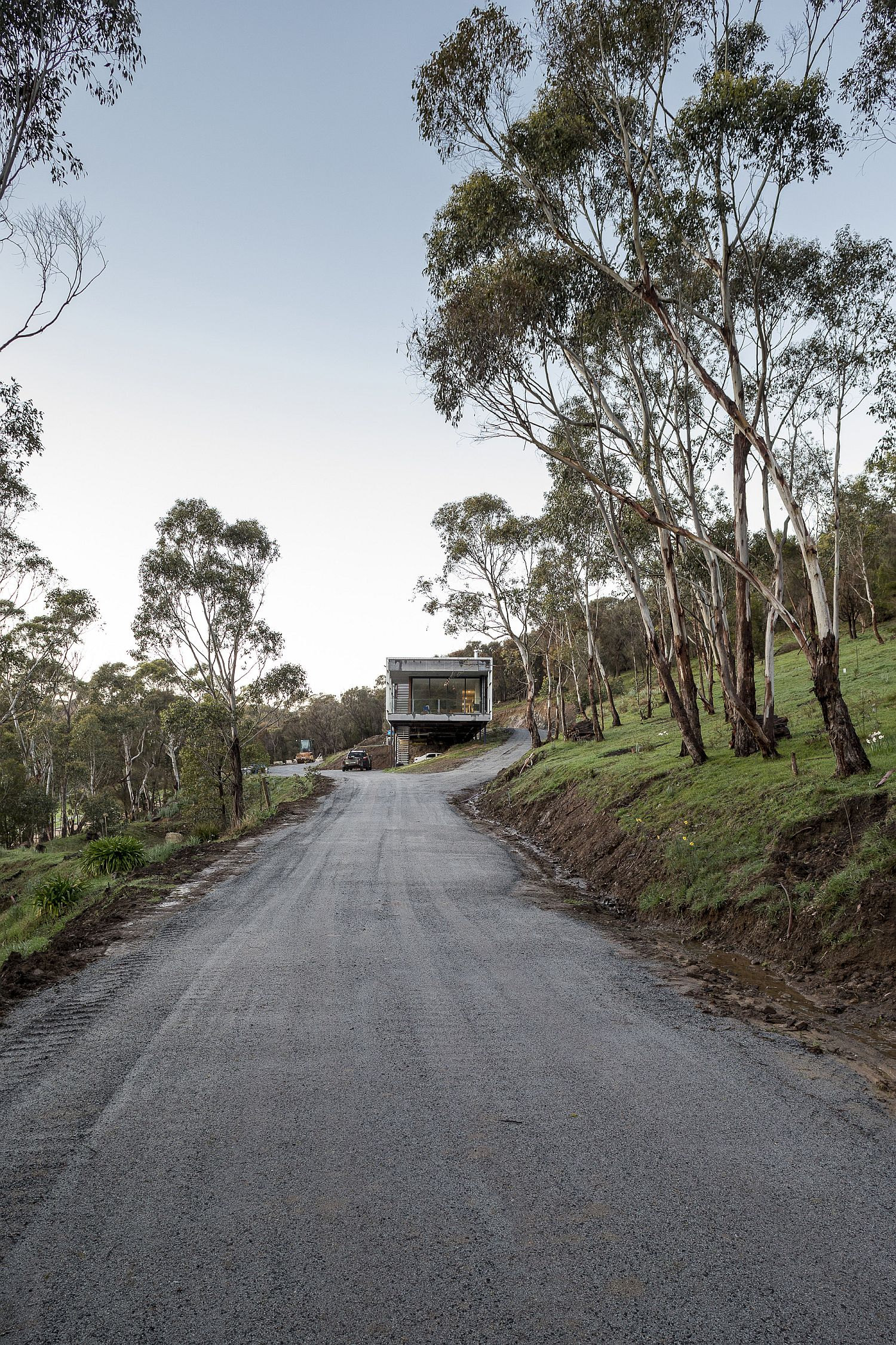 Natural canopy flanks the road leading up to the Mount Macedon House