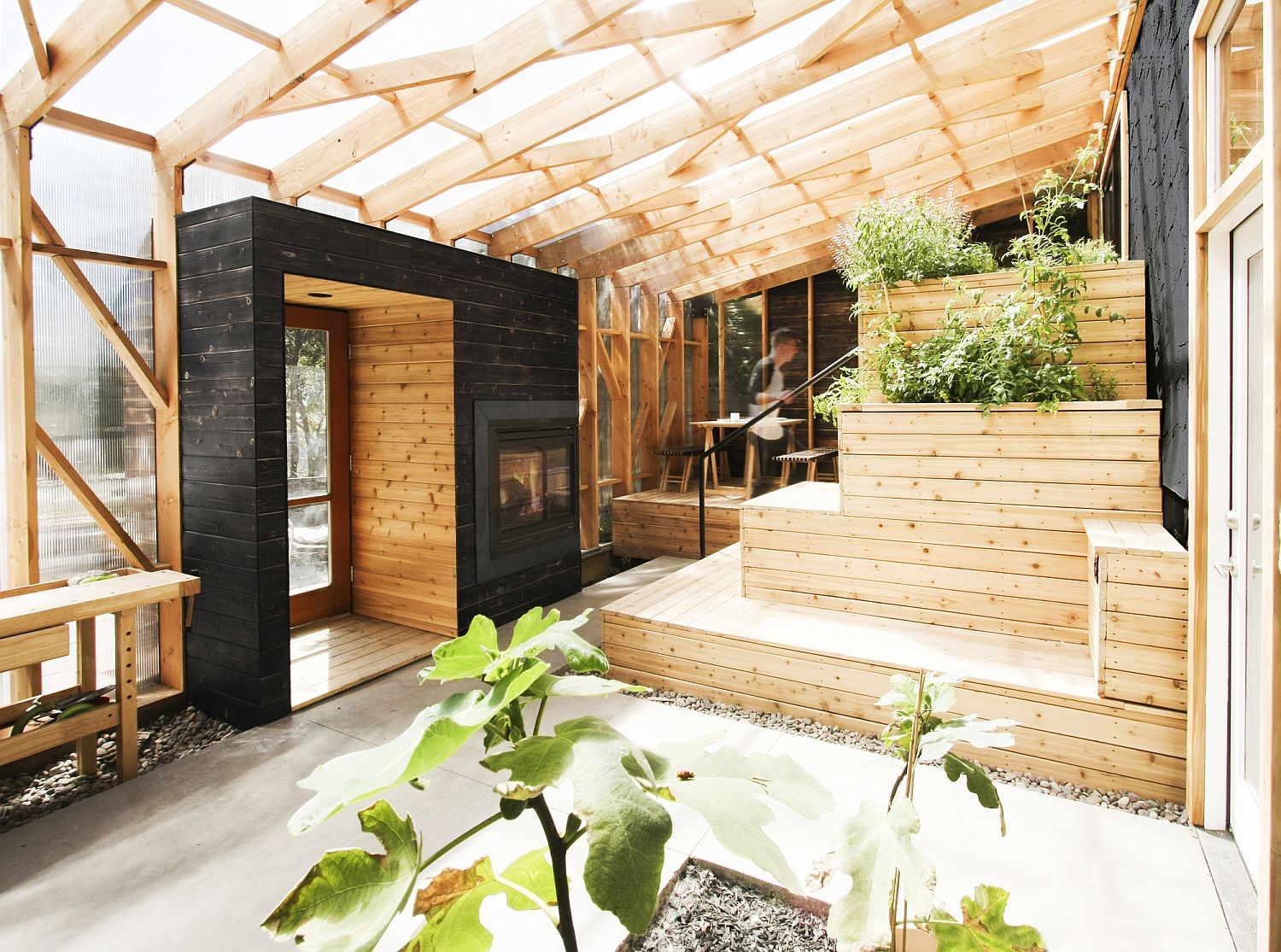 Terraced deck with integrated planters for the space savvy modern greenhouse Amazing Solarium Steals the Show at this Renovated Mid Century Bungalow