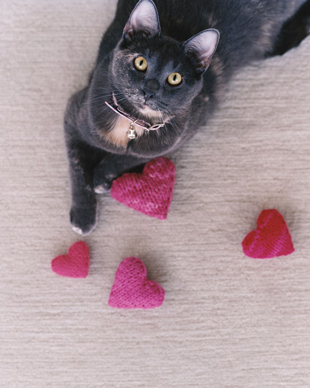Valentine's Day DIY Knitted Catnip Delight