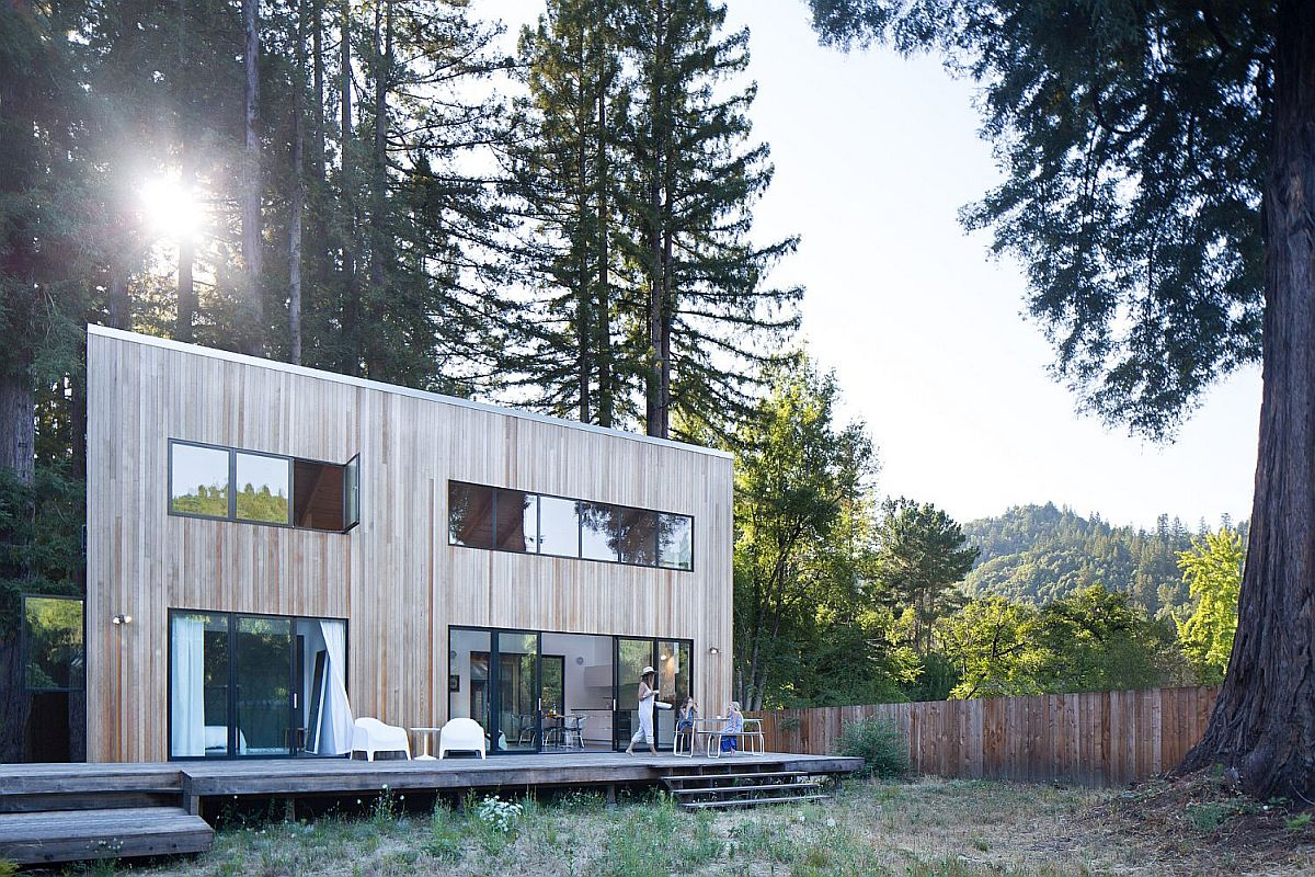 Large redwood in the rear yard adds imposing elegance to the wooden cabin Imposing Old Redwoods Surround this Modern Vacation Home in California