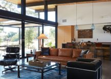 Midcentury-modern-decor-for-the-stylish-interior-217x155