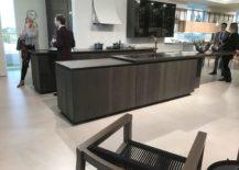 Modern-kitchen-setting-GamaDecor-217x155