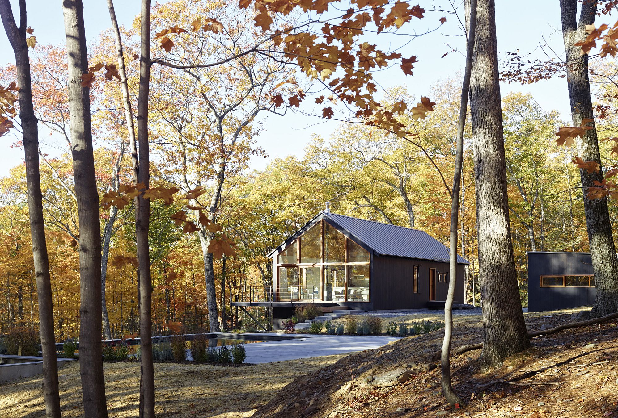 Natural-forest-around-the-cabins-is-left-as-undisturbed-as-possible