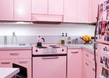 Pastel-pink-kitchen-with-a-serene-and-clean-look-217x155