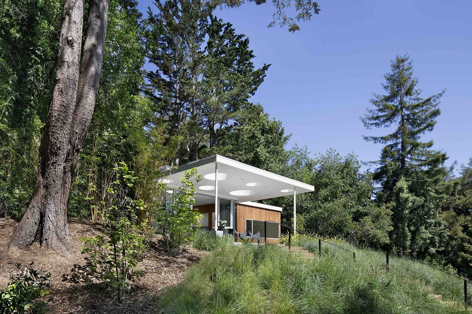 Mill valley guesthouse a relaxing hangout for friends and for Mill valley architects