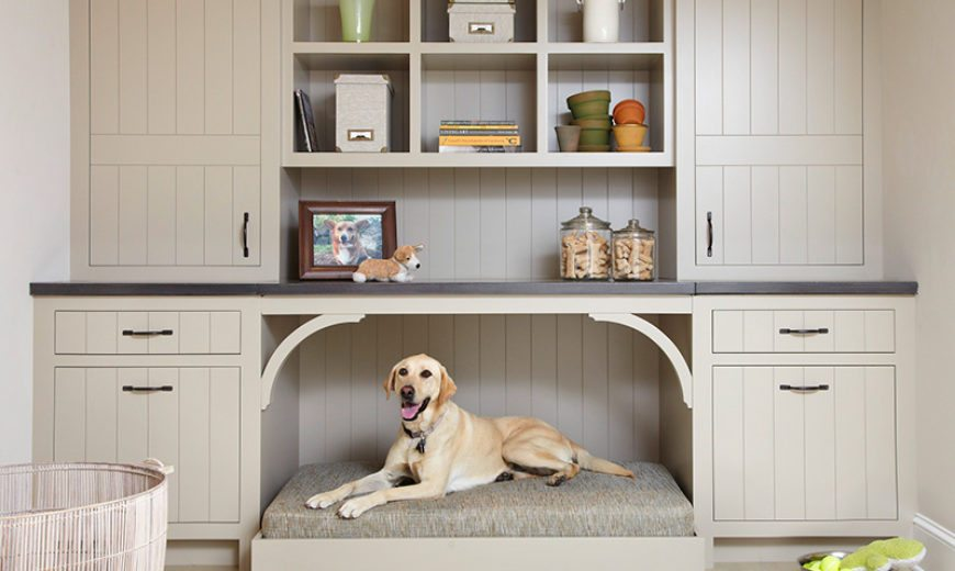 DIY Pet Bed Ideas to Pamper Your Furry Friends