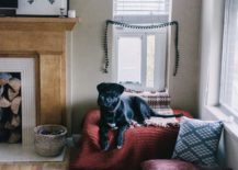 A-cozy-dog-nook-set-up-in-the-corner-of-the-room-217x155
