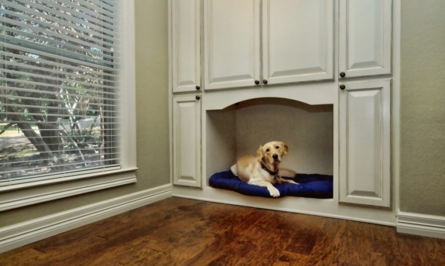Modern Dog Nooks That Are Cozy and Stylish