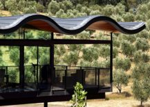 Cantilevered-portion-of-the-house-with-the-fabulous-roof-217x155