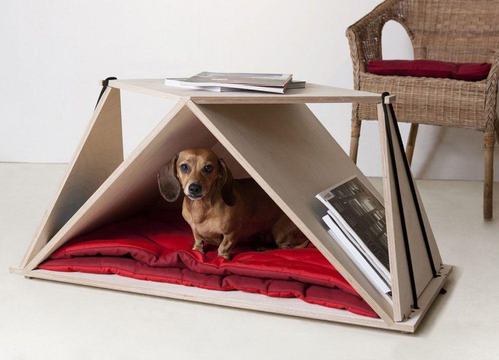 Contemporary coffee table as a versatile dog nook