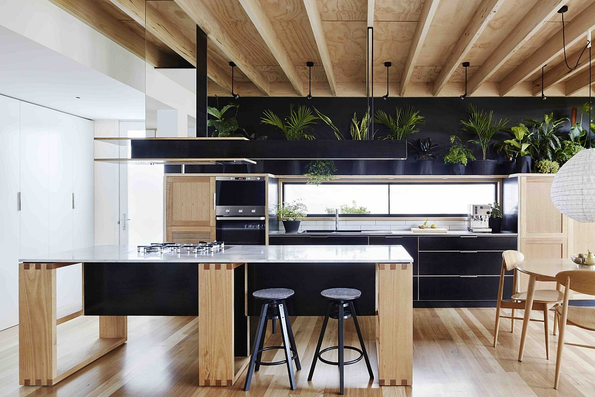 Dark backdrop of the kitchen enlivened using gorgeous indoor plants