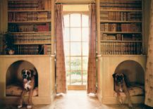 Dog-nooks-in-a-home-library-217x155