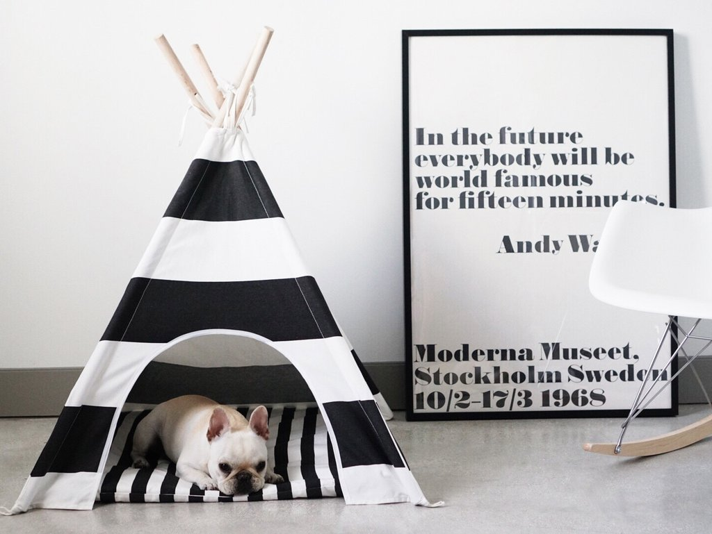 Doggy teepee as the perfect hiding space