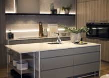 Light-gray-blends-in-beautifully-with-white-in-the-modern-kitchen-217x155