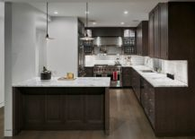 Marble-countertops-combined-with-dark-wood-shelves-in-the-kitchen-217x155