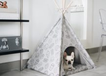 Stylish-and-comfortable-puppy-teepee-217x155