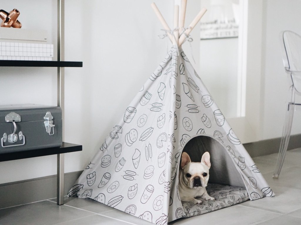 Stylish and comfortable puppy teepee