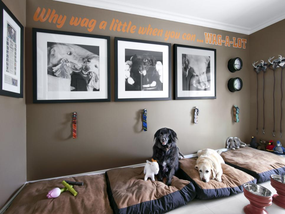 Turn a whole room into a dog nook