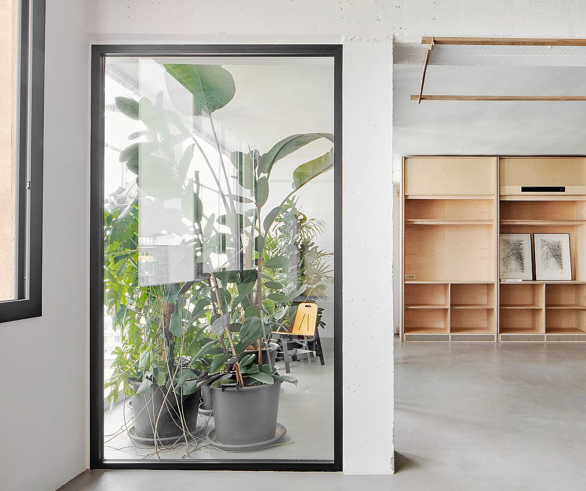 Winter garden brings light into the office while adding freshness