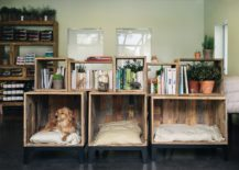 Pet Owners Delight: Beautiful Dog Nooks That Add To Your Interior