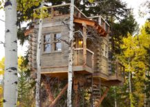 A-big-wooden-treehouse-with-a-dynamic-shape-217x155