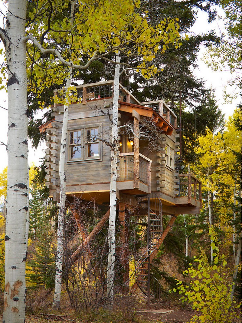 A big wooden treehouse with a dynamic shape